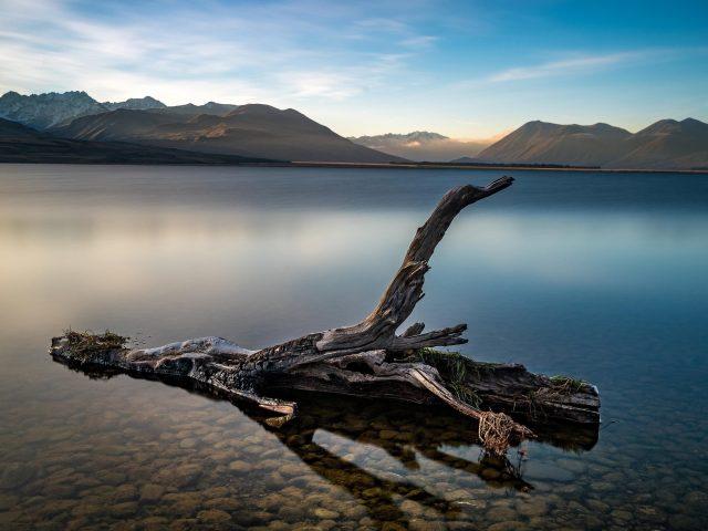 Сухое дерево в озере перед коричневой горой под голубым небом в дневное время Земля озеро природа
