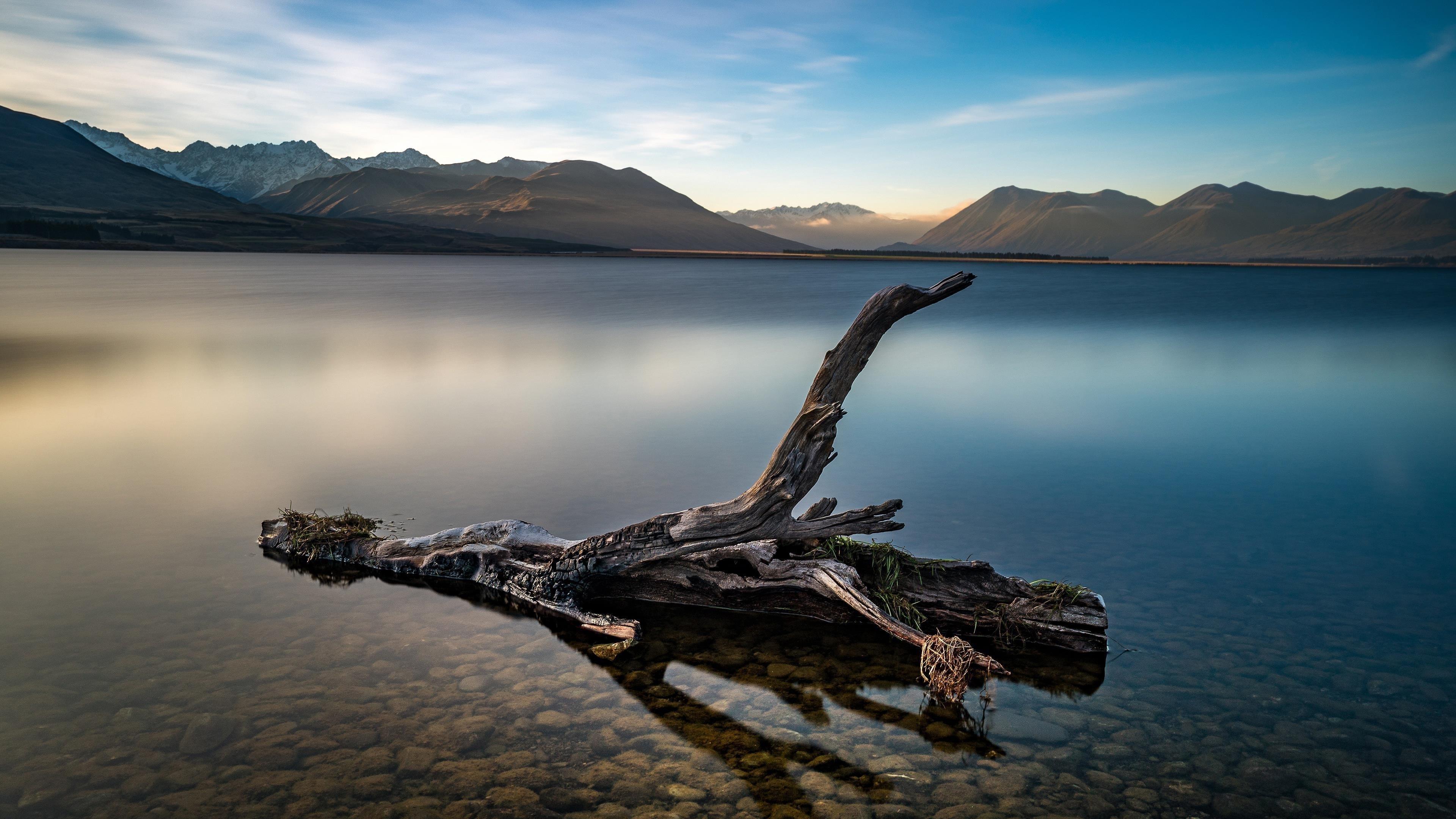 Сухое дерево в озере перед коричневой горой под голубым небом в дневное время Земля озеро природа обои скачать