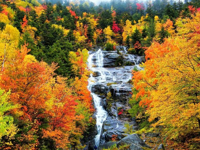 Водопад на скалах между красочными осенне-весенними деревьями с листвой лесная природа