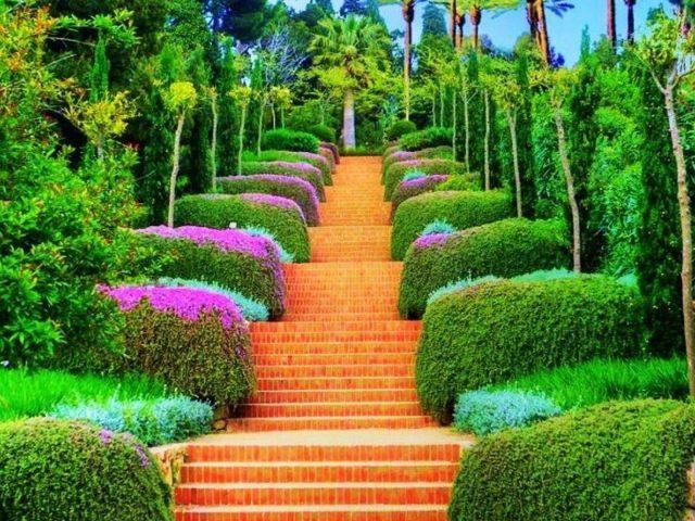 Ступеньки между красочными растениями в саду, окруженном деревьями природы