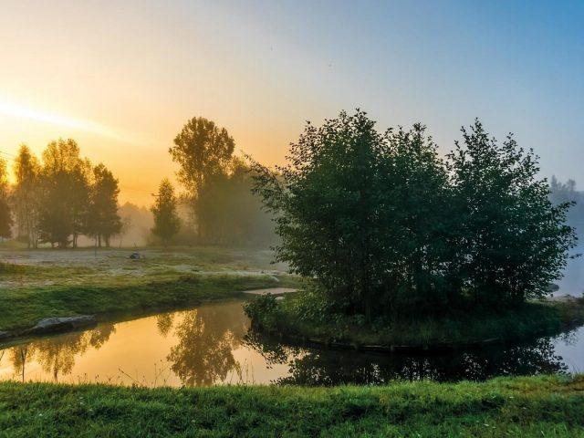 Природа рассвет туман пейзаж и река летом природа