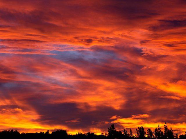 Закат небо деревья кусты облака