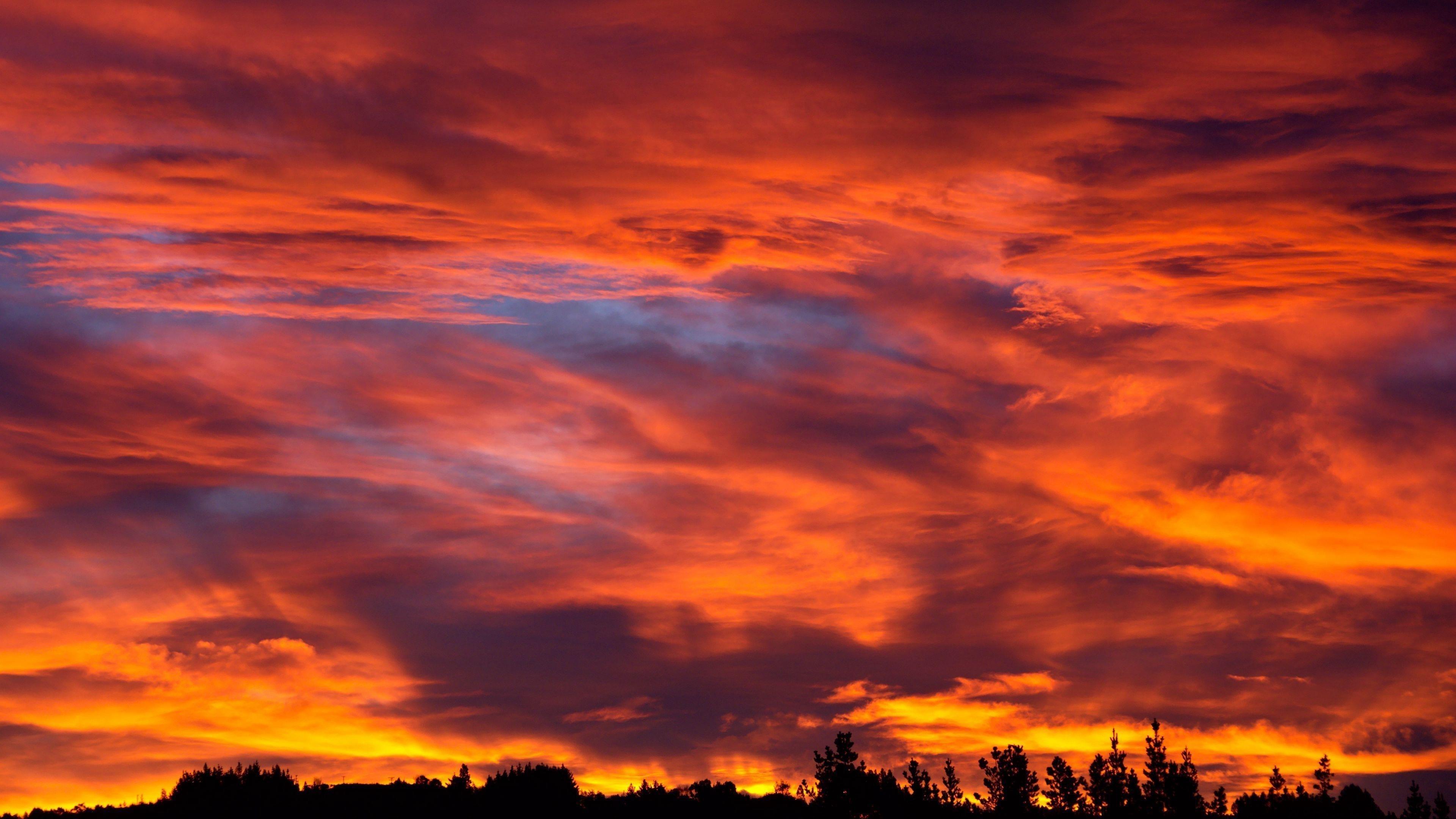 Закат небо деревья кусты облака обои скачать