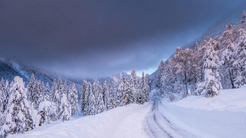 Тропинка покрытая снегом между снежными полями лесом во время зимней природы обои скачать