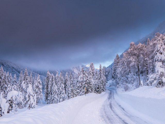 Тропинка покрытая снегом между снежными полями лесом во время зимней природы