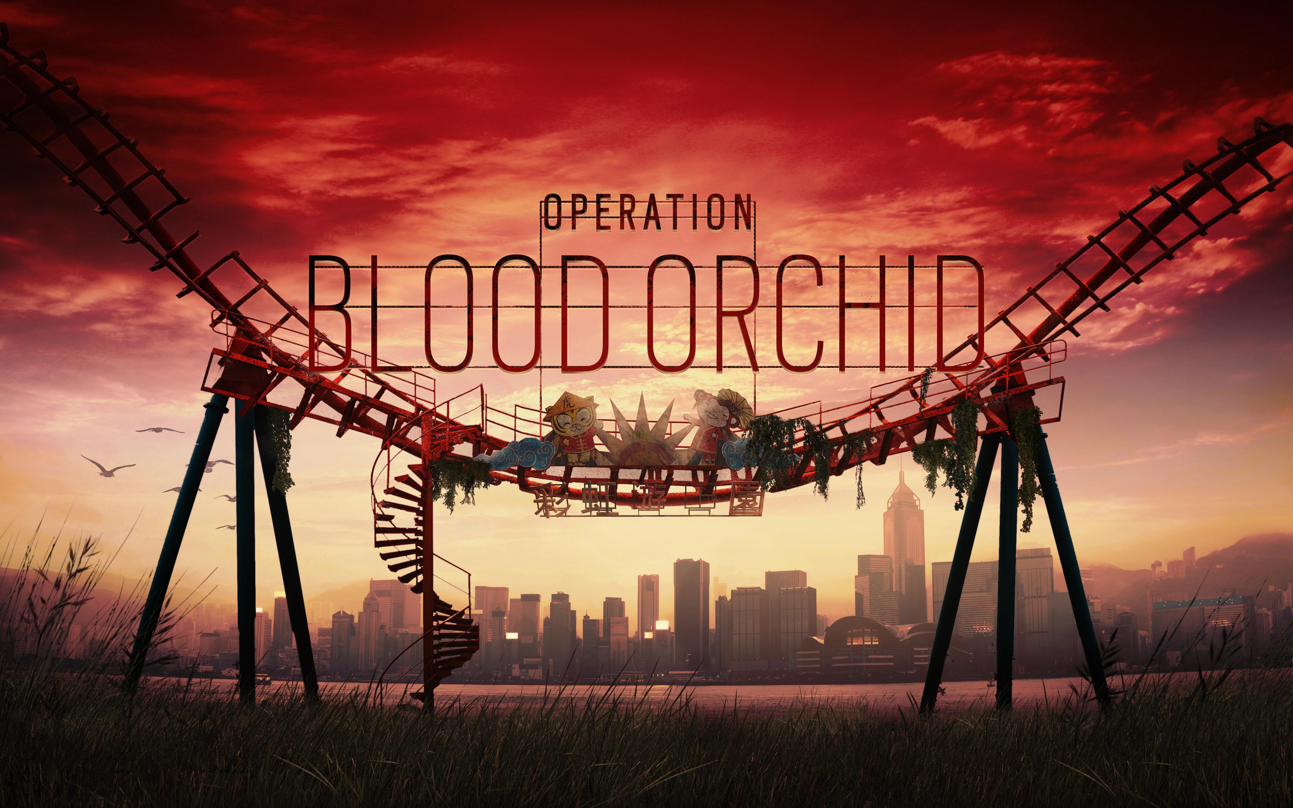 Радуга шесть осады операция крови орхидеи обои скачать