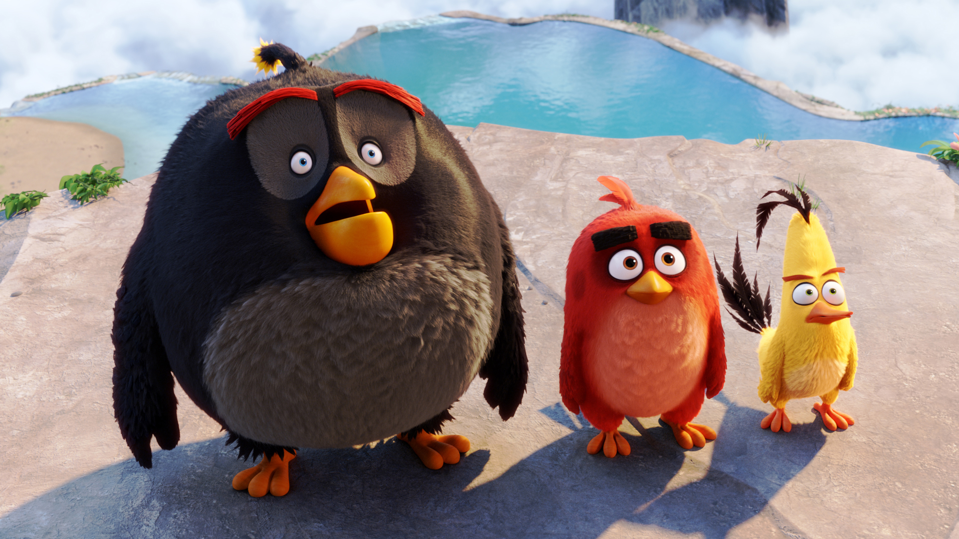 Бомба красная Чак злые птицы. обои скачать