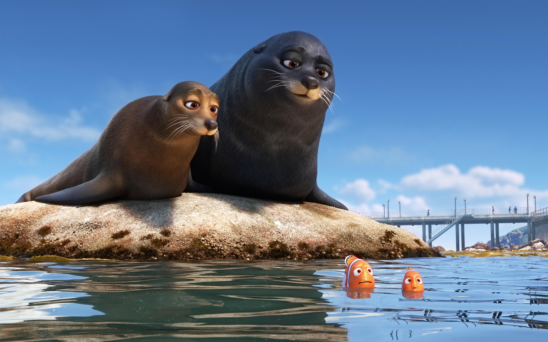 Морские львы марлина Немо поисках Дори обои скачать