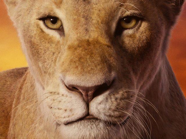 Симба с карими глазами Король Лев