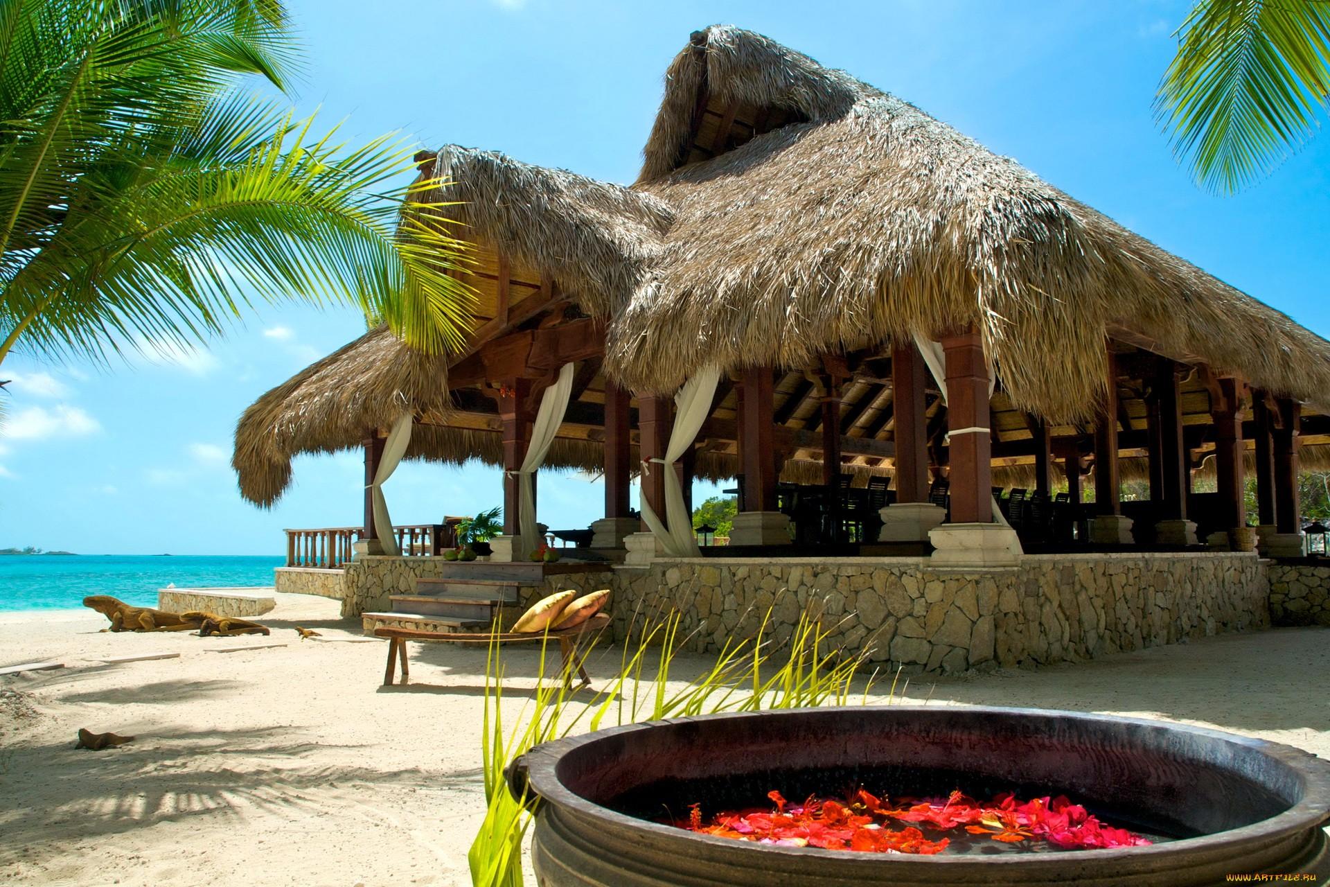 Багамы, отдых, пальмы, песок обои скачать