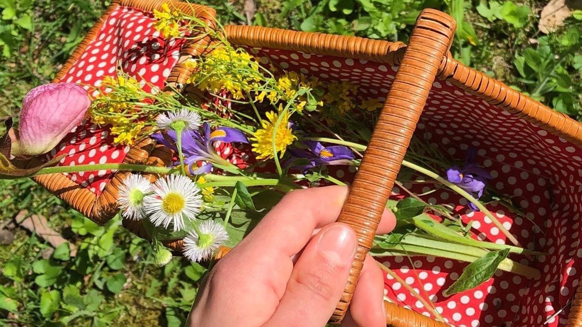 Маленькая корзинка с цветами дачный уход обои скачать