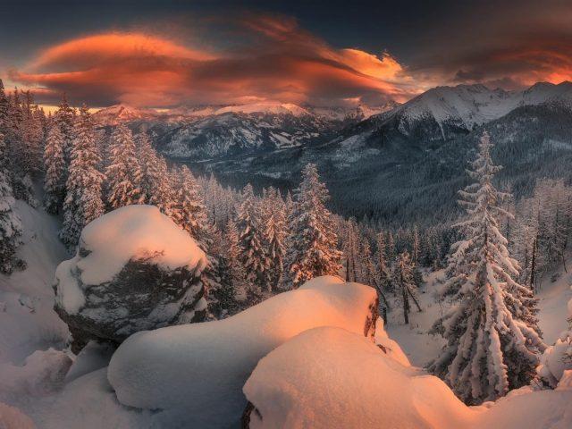 Лес горная природа снег закат зимняя природа