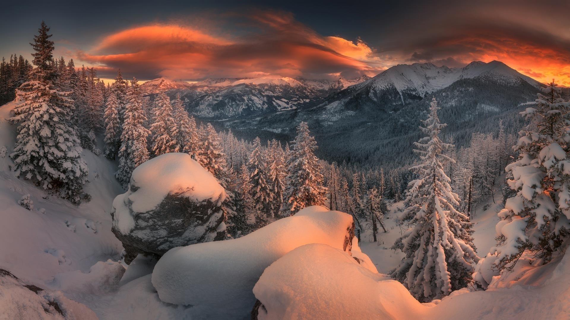 Лес горная природа снег закат зимняя природа обои скачать