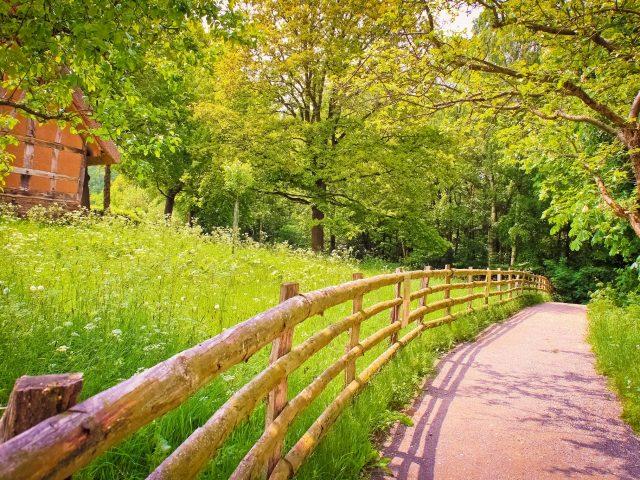 Дорога,  тень,  забор,  деревянный