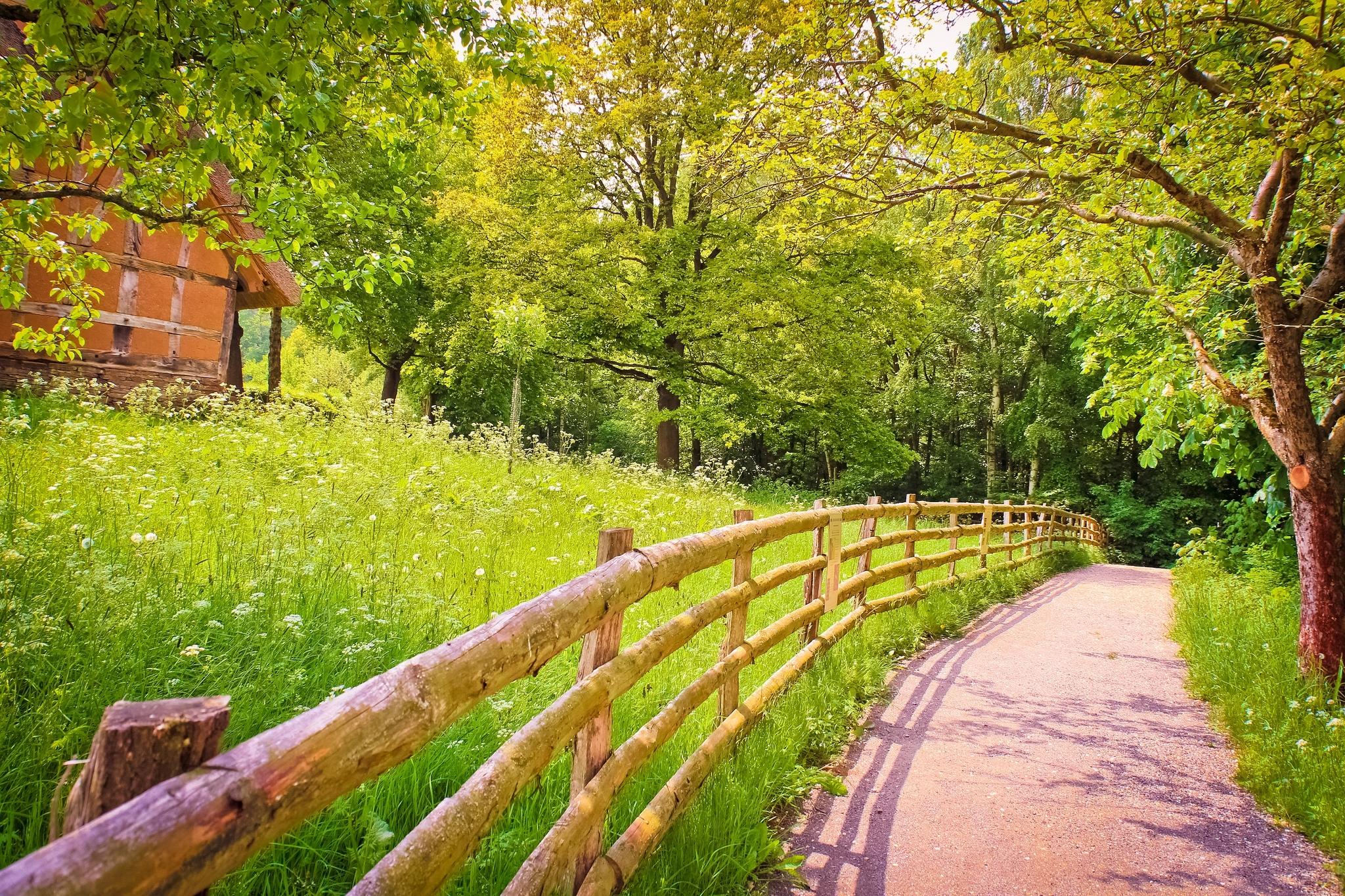 Дорога, тень, забор, деревянный обои скачать