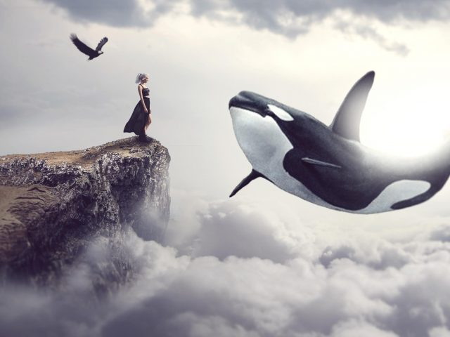 Фантазия кита