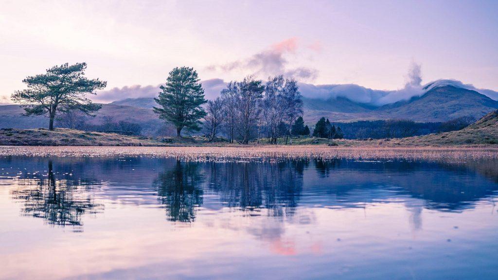 Деревья с отражением на реке с пейзажным видом на покрытые туманом горы природа обои скачать