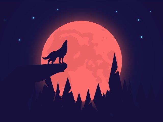Воющий волк ночь луна