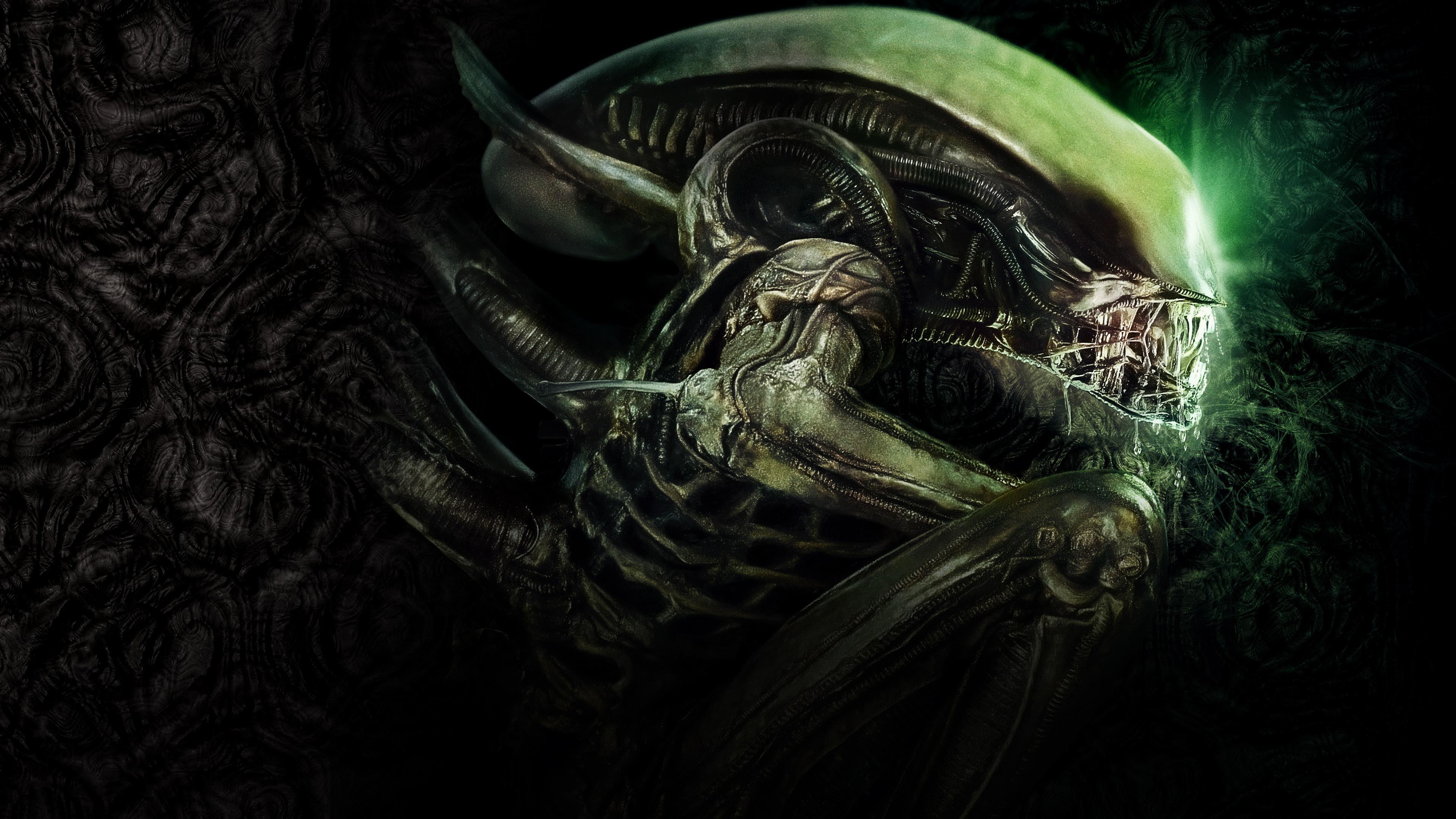 Alien. обои скачать