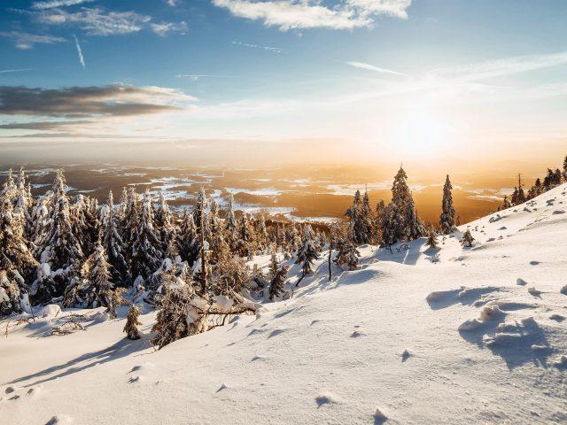 Небо снег деревья ель
