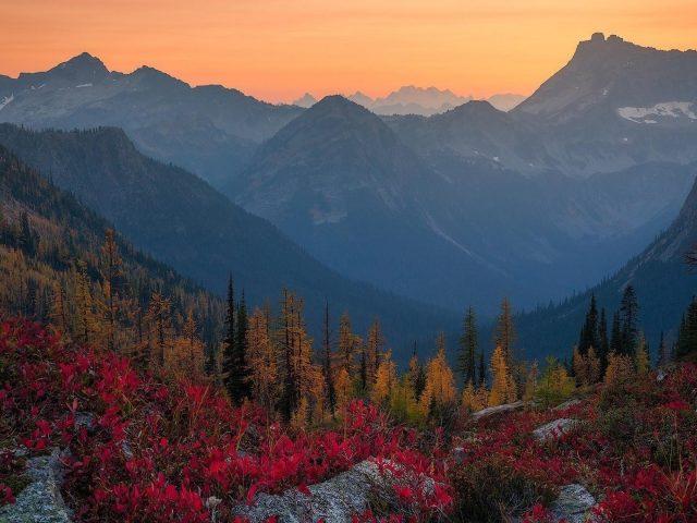Альпы падают лесные горы во время заката природа