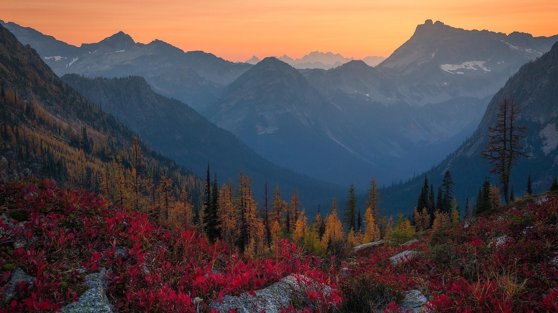 Альпы падают лесные горы во время заката природа обои скачать