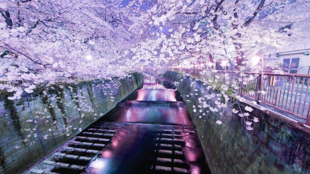 Мост украшен цветущими цветами природы обои скачать