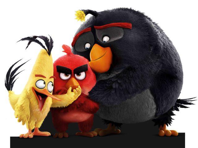 Злые птицы.