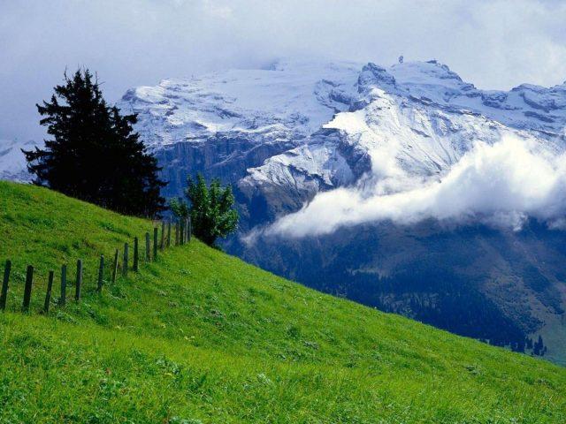 Пейзаж заснеженных гор с туманом и зеленой травой покрытой горной природой