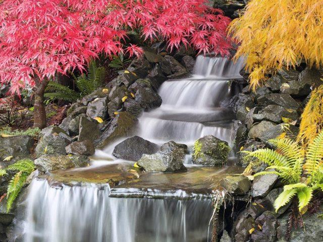 Водопады струятся по камням между красно-желтыми опадающими листьями, падают деревья