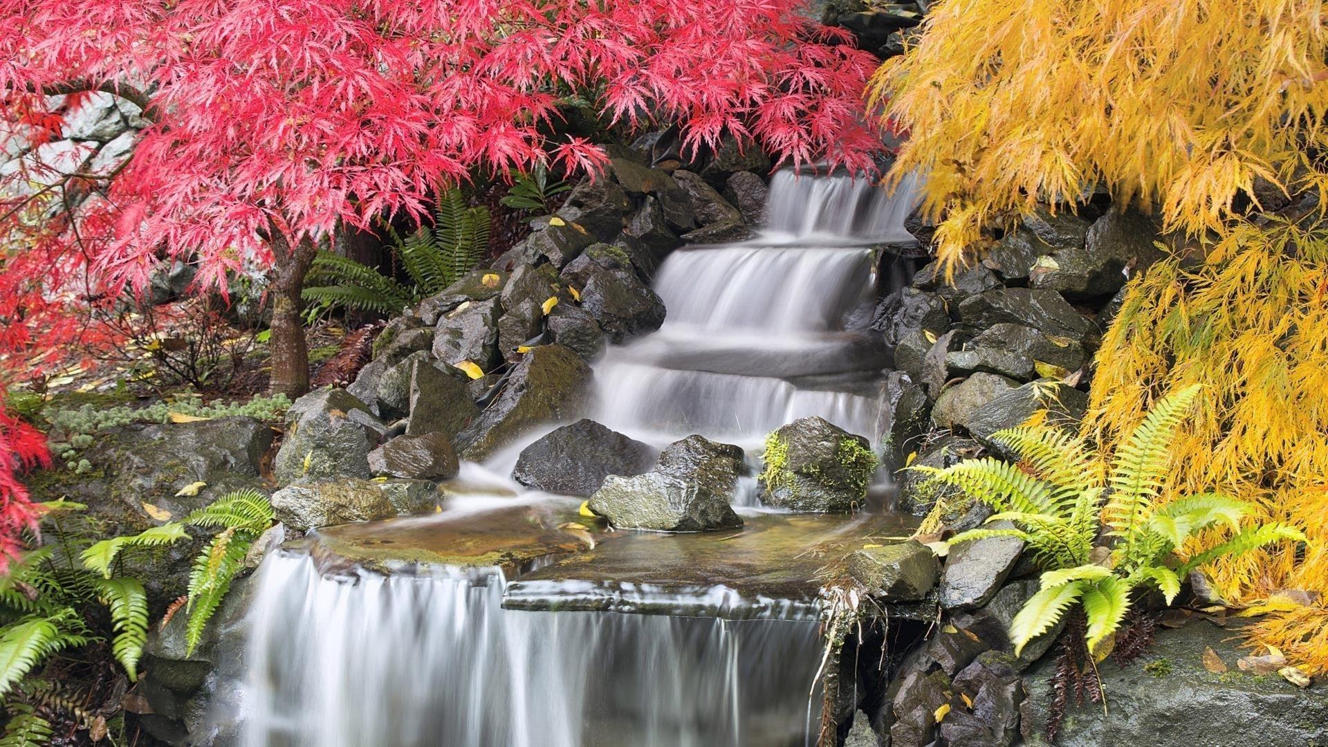 Водопады струятся по камням между красно-желтыми опадающими листьями, падают деревья обои скачать