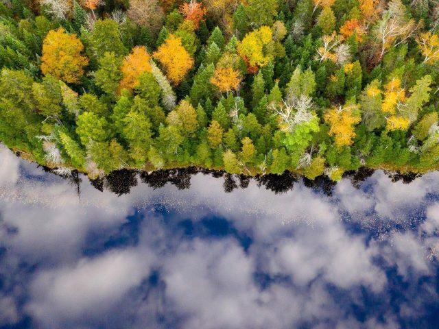 Аэрофотоснимок осеннего леса с отражением голубого облачного неба на речной природе