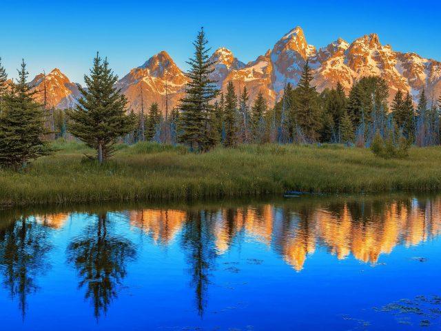 Пейзажный вид на горы и деревья с отражением на реке в национальном парке Гранд Титон природа