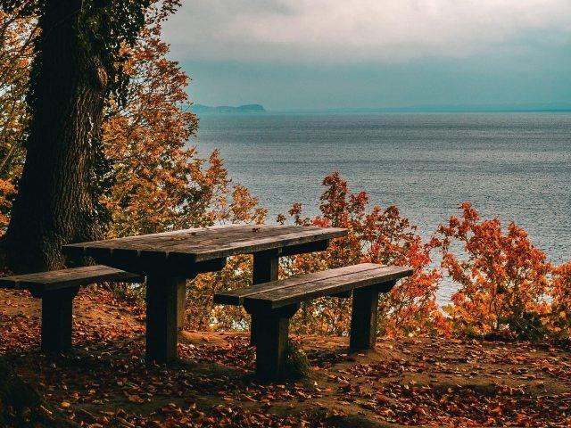 Деревянные скамейки осенние деревья океан белые облака голубое небо осень