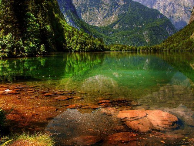 Прекрасный пейзажный вид на покрытые зелеными деревьями горы отражение на водоеме пейзаж