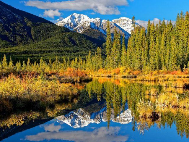 Пейзаж белых Скалистых гор с отражением на озере в национальном парке Альберта Банф Канада природа