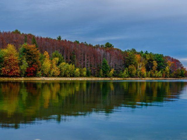 Красочные деревья вдоль берега водоема с отражением под голубым небом в вечернее время природа