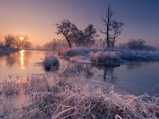 Мороз трава и деревья на реке во время восхода солнца природа