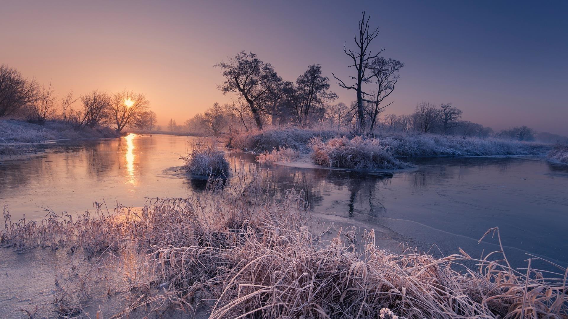 Мороз трава и деревья на реке во время восхода солнца природа обои скачать