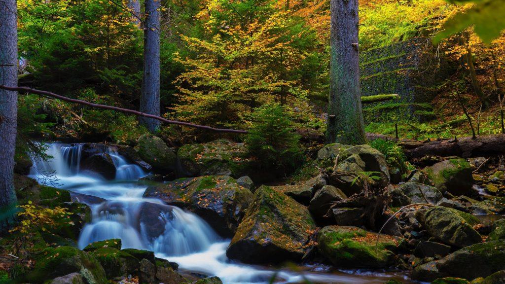 Водопад ручей между покрытых водорослями скал в окружении деревьев природа обои скачать