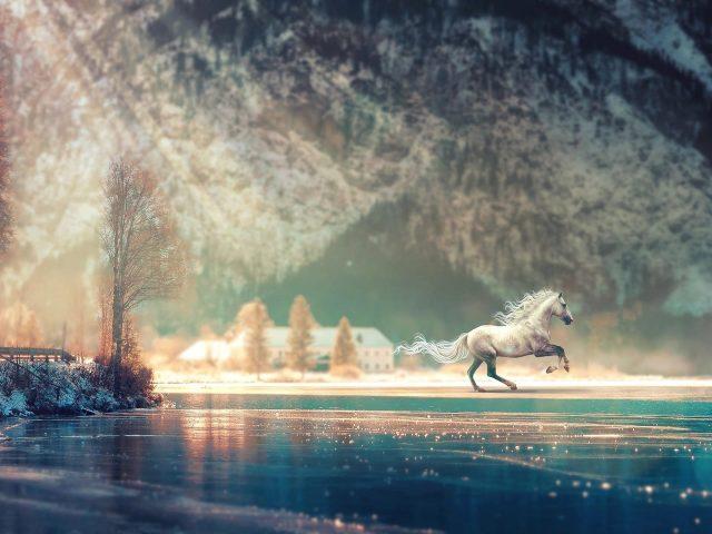 Фантазия о беге лошади