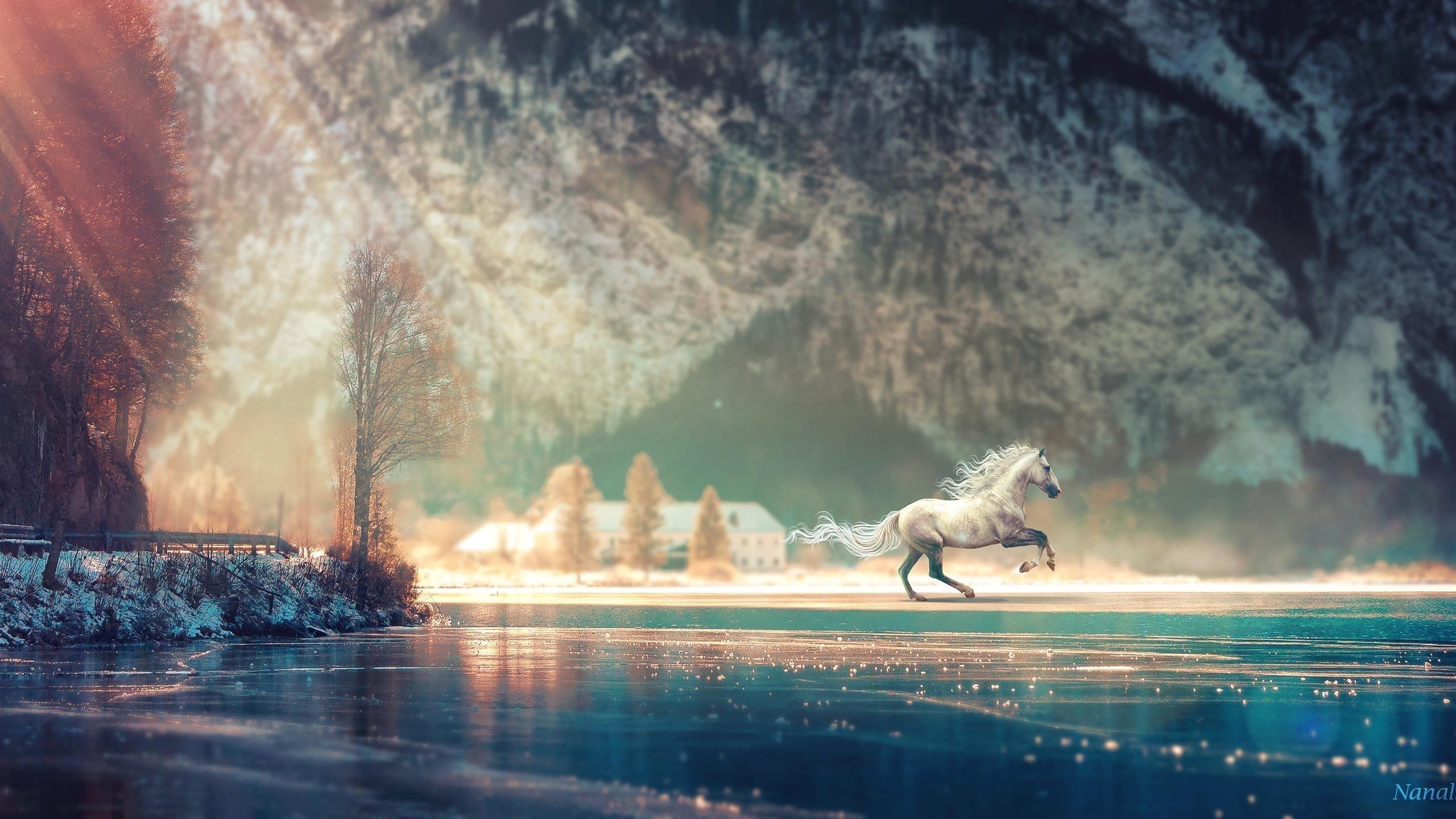 Фантазия о беге лошади обои скачать