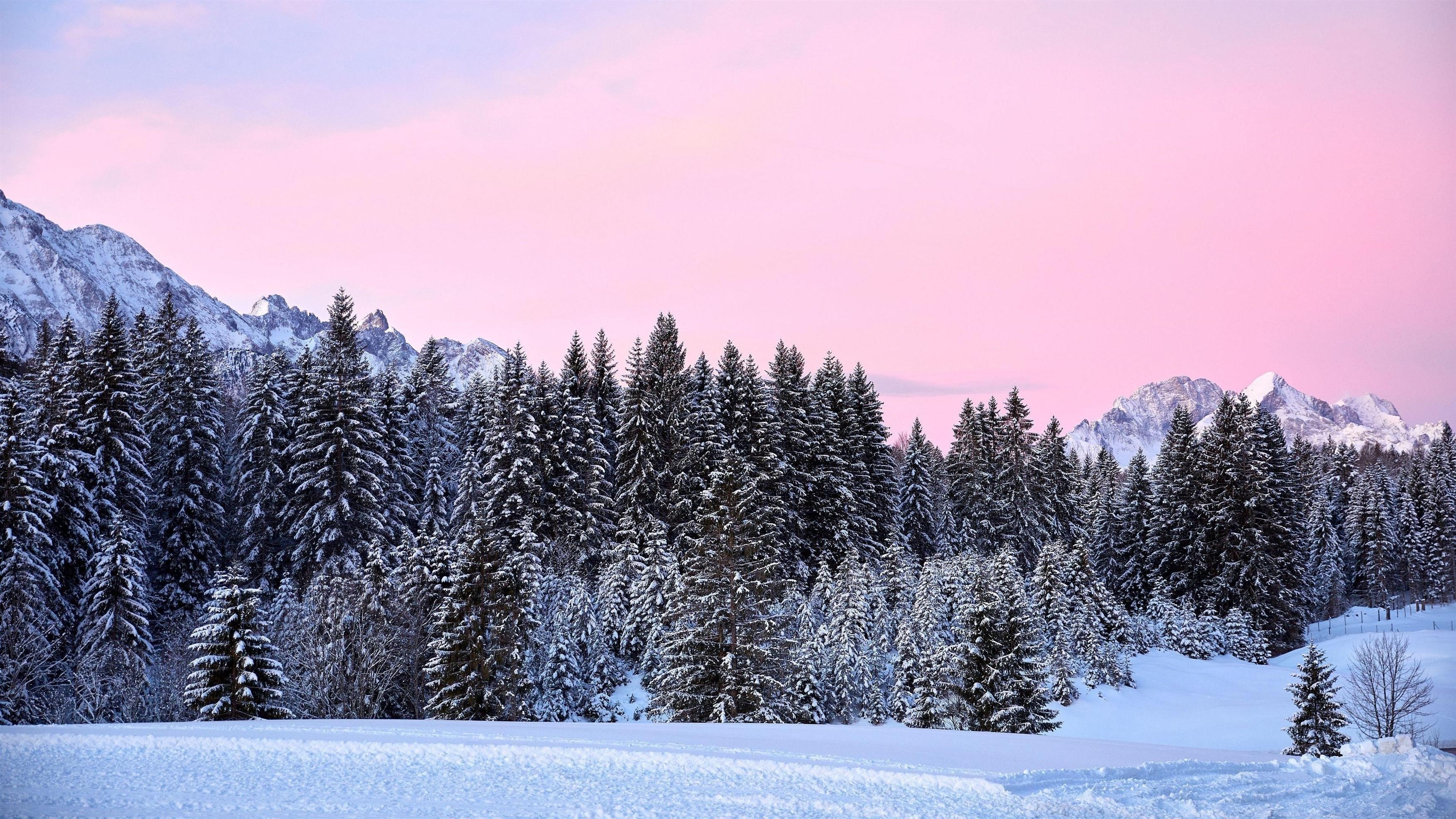 Горы деревья розовый снег обои скачать