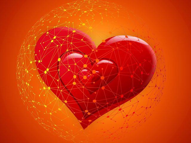 Любовь сердца аннотация