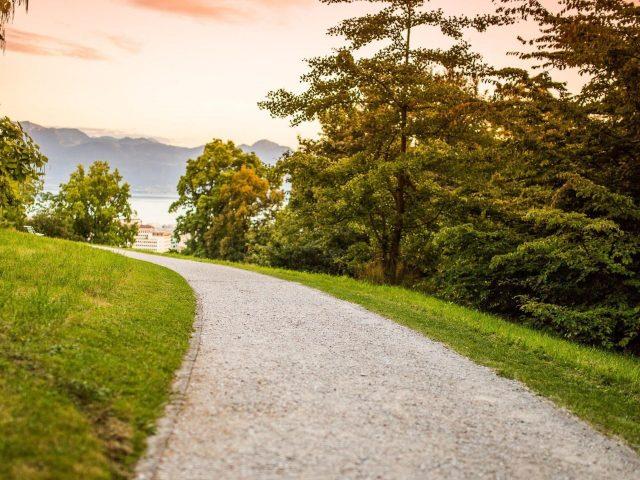 Дорога между зеленой травой поле земля деревья пейзаж вид на горы река природа