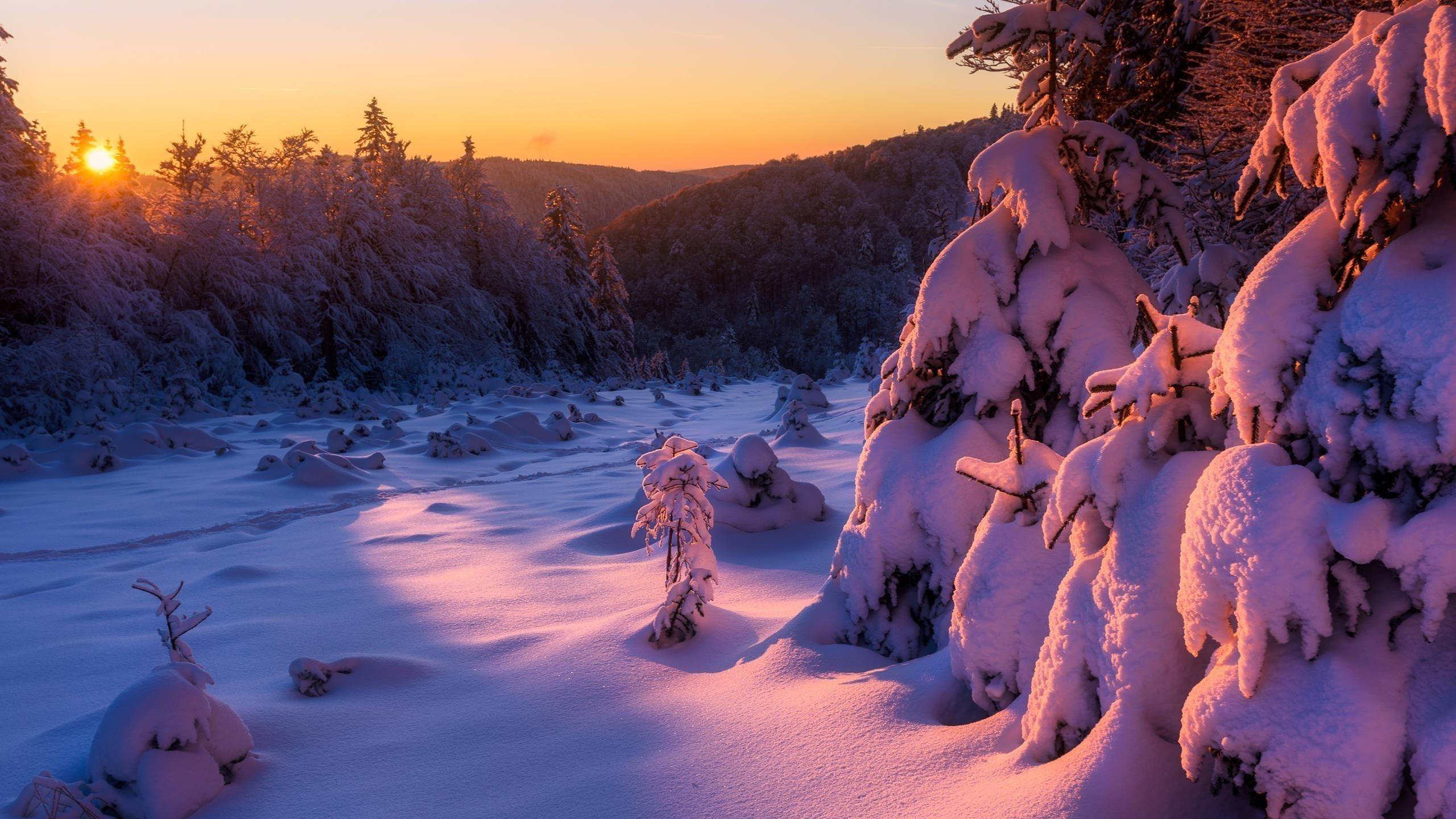 Зимний восход солнца обои скачать