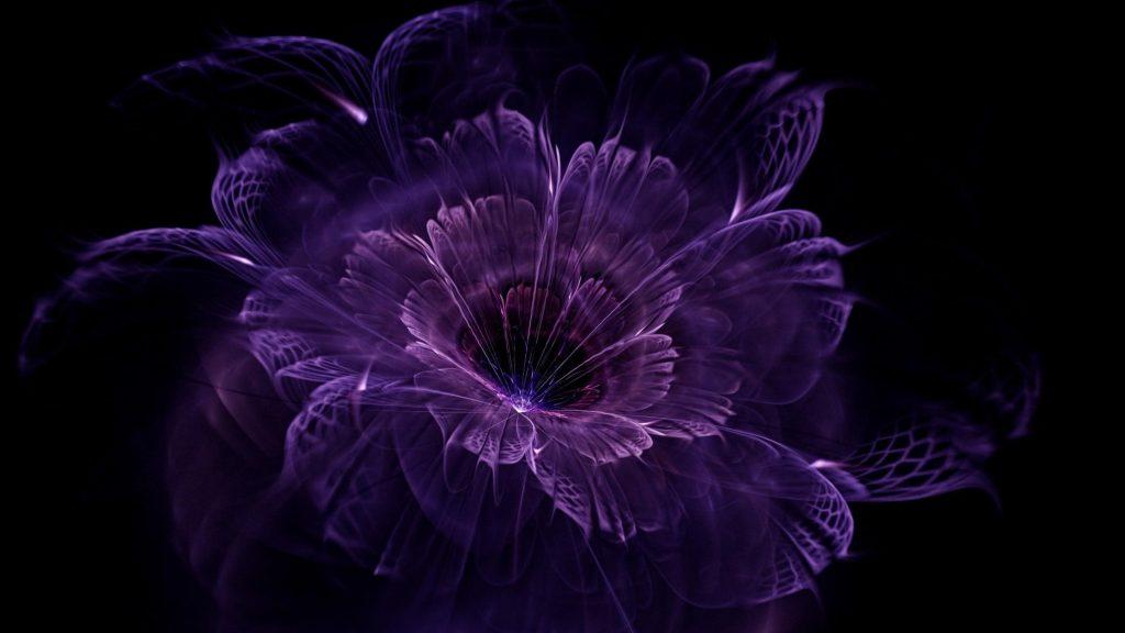Фиолетовый цветок искусство абстракция обои скачать