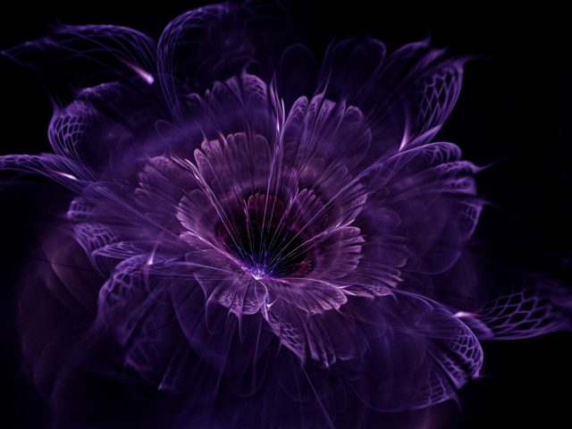 Фиолетовый цветок искусство абстракция