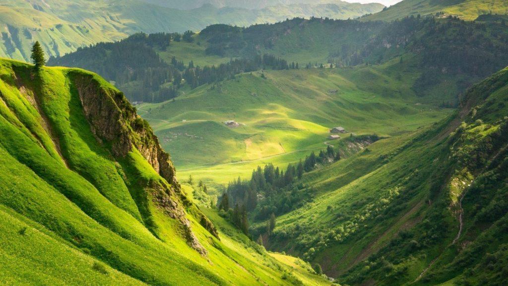Вид с высоты птичьего полета на зеленую траву и покрытые деревьями горы природа обои скачать