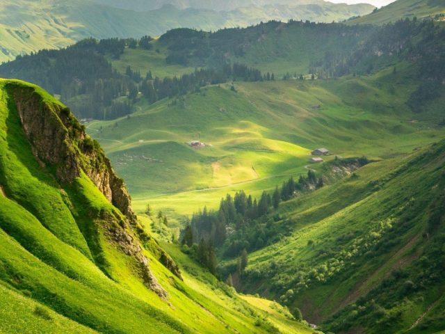 Вид с высоты птичьего полета на зеленую траву и покрытые деревьями горы природа
